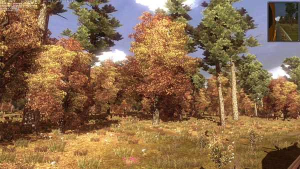 Autumn Mod
